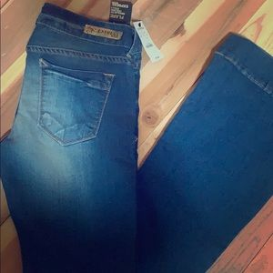 Express flare low rise Stella jeans